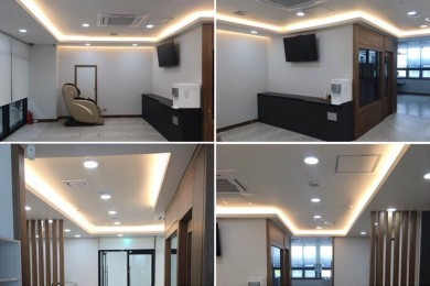 Carbon Heated Light and Heater - Ceiling…